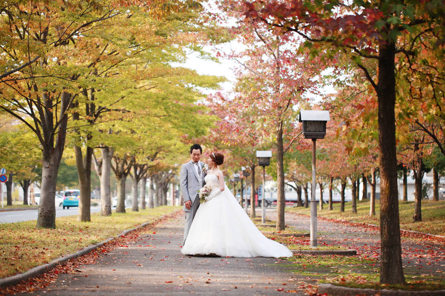 Hikone Autumn Wedding Dress