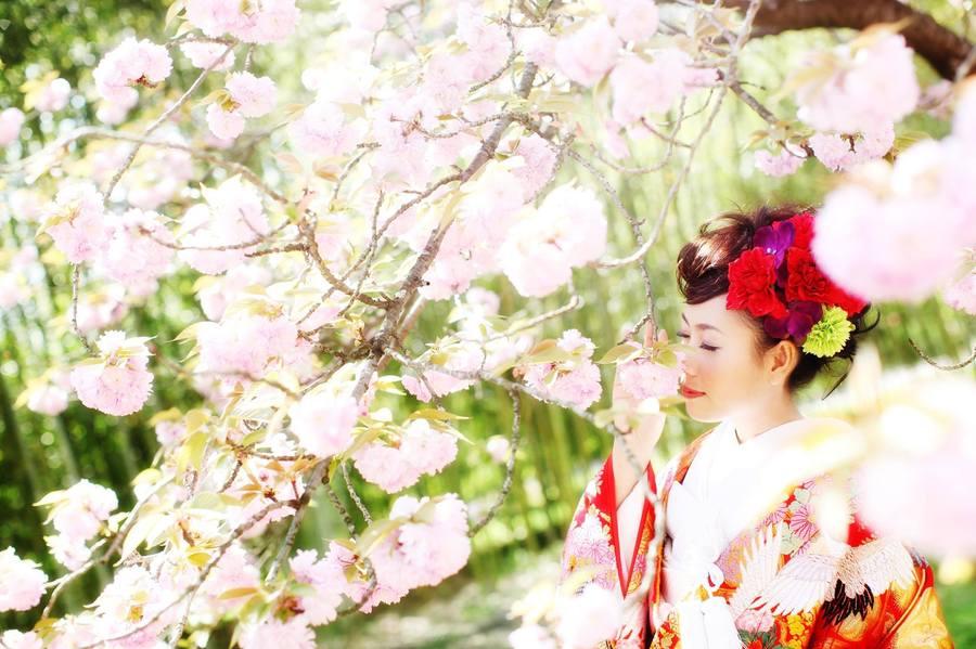 Kyoto Botanical Garden 5