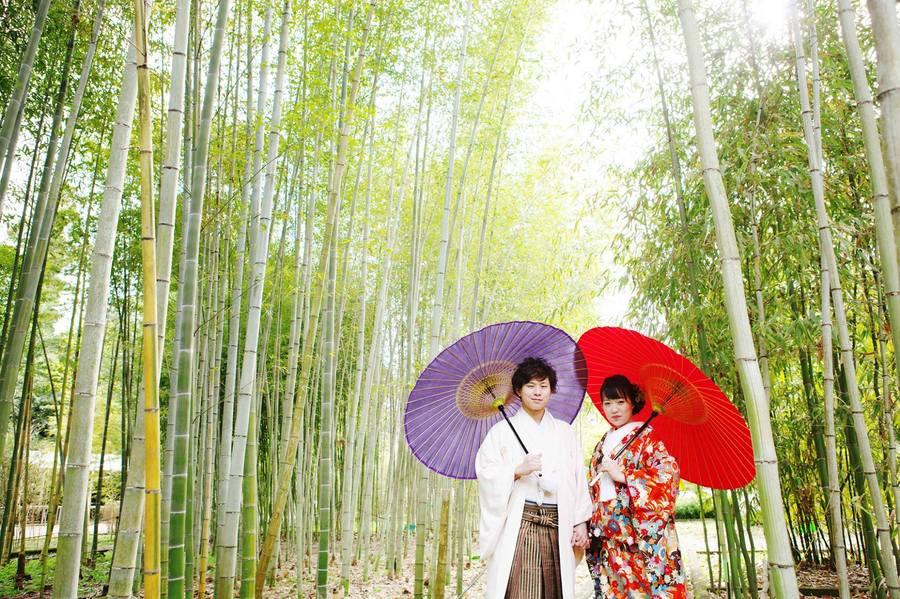 Kyoto Botanical Garden 4